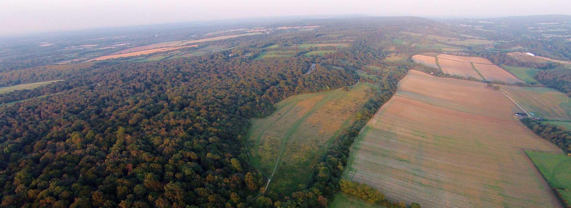 Davies White / Surrey County Council / Surrey Wildlife Trust ...